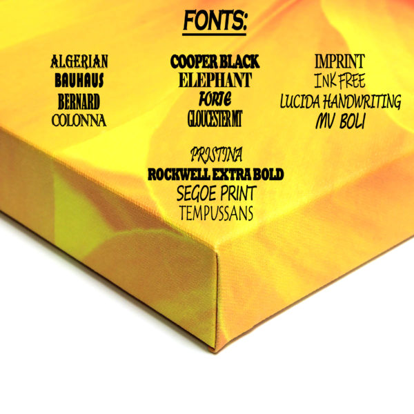 Available font options